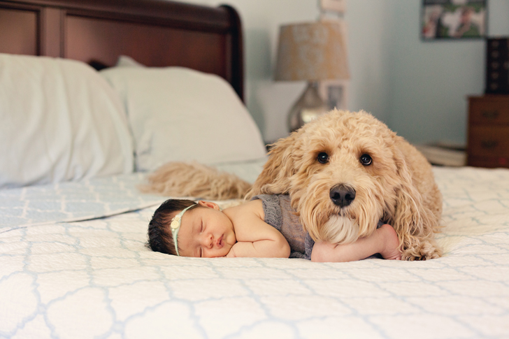 Davis-Lifestyle-dog-and-baby
